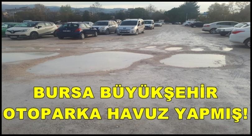 Ali Nur Aktaş'ın havuzlu otoparkı